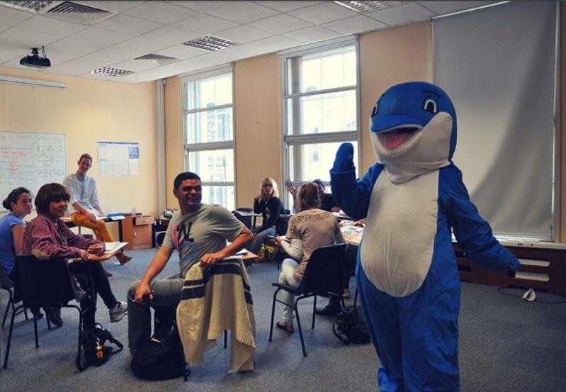 escuela Delfin de inglés para latinoamericanos en Irlanda